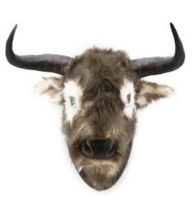 Ox Head Jos