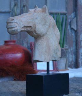 horse-head-2