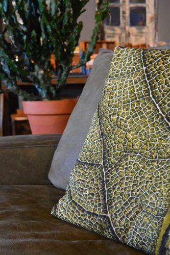 Cushion Leaf