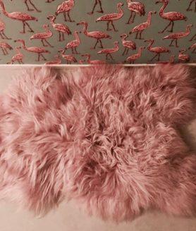 Schapenvacht roze van Dyreskinn