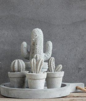 Cactus Beton Pure Wood