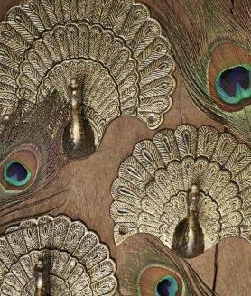 haak peacock