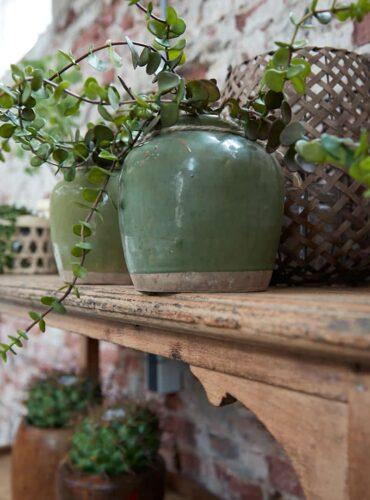Pot olijf groen uniek