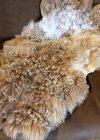 Ingezoomde foto van deze schapenvacht