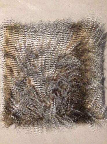 Sierkussen feathers