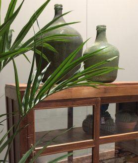 Vazen antiek groen