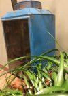 Lantaarn metaal productfoto detailfoto