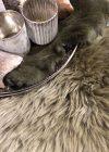 Schapenvacht longwool groen detailfoto