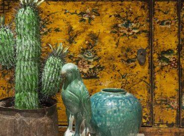 Porseleinen papegaai groen sfeerfoto