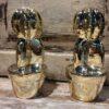 cactus-goud-l-2
