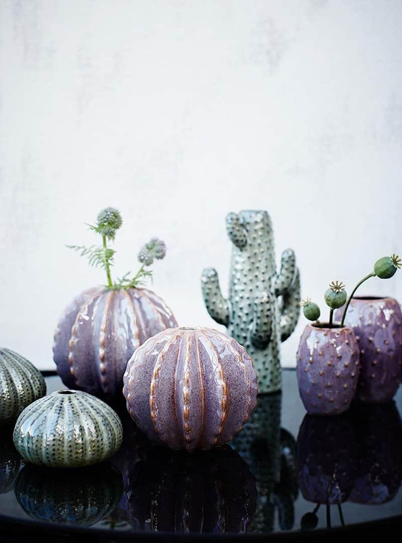 Cactus-vaas