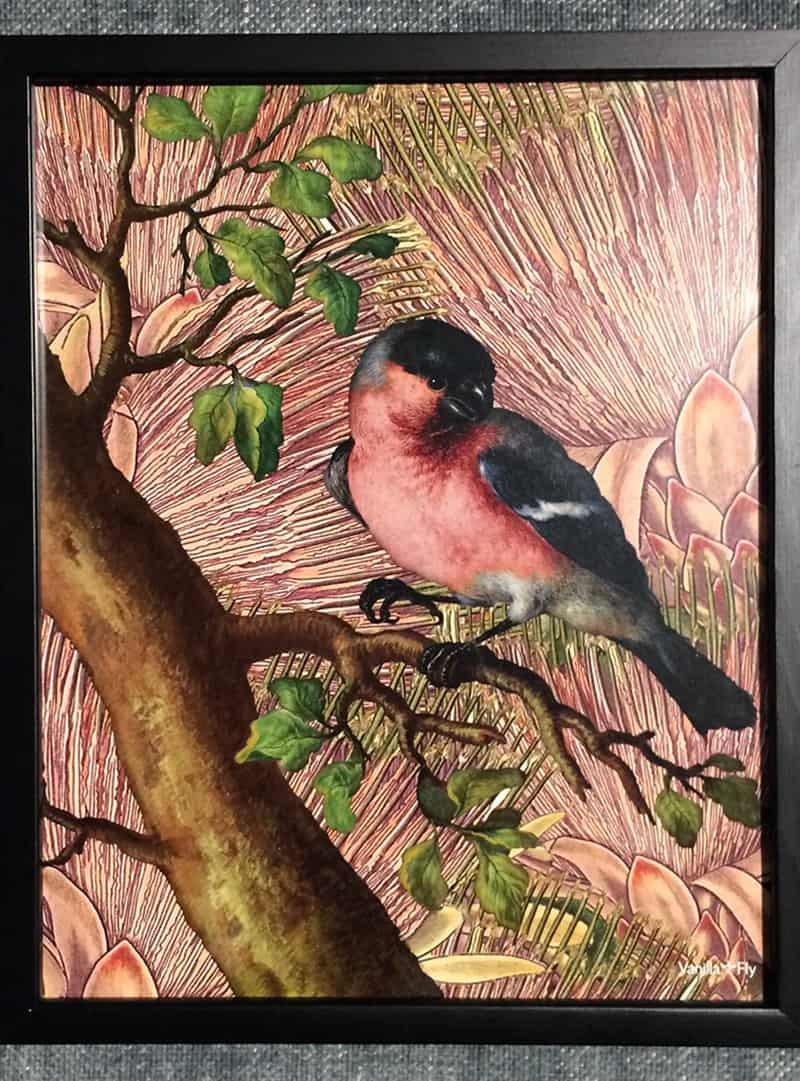 poster-roze-vogel