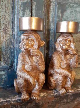 Gouden kandelaar aap