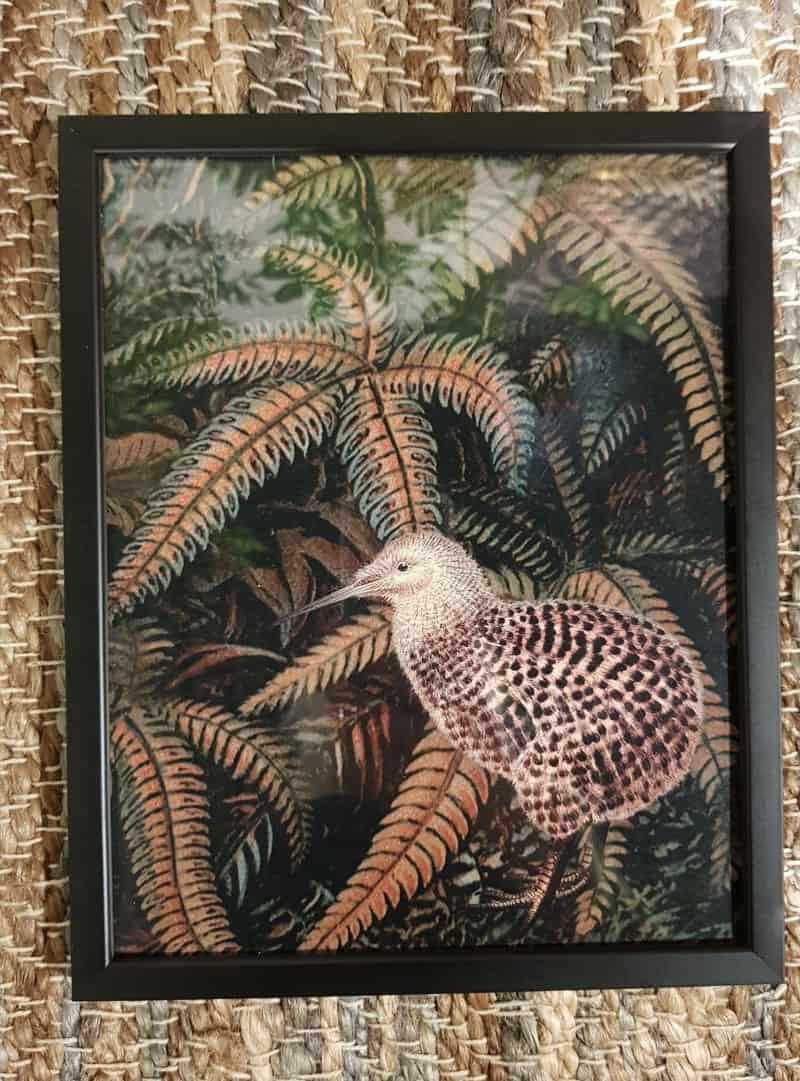 poster-jungle