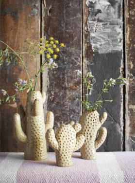 Cactus Vaas 2