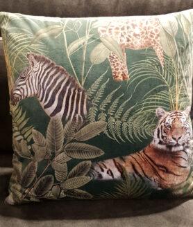 Claudi Bibi Tropical Safari1