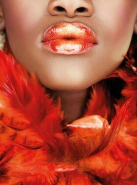 Alu art schilderij lippen en veren rood