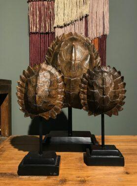 Ornament turtle shell3