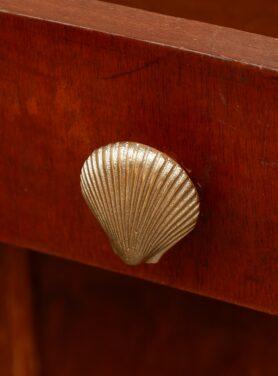 abby-shell