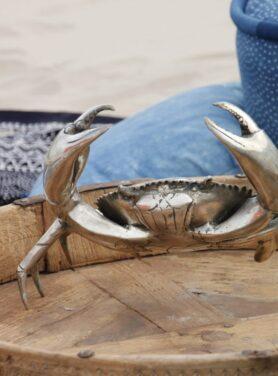 colin-crab-2
