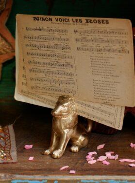leon lion kaarthouder