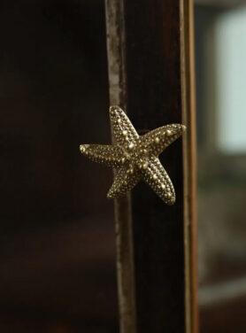 Kastknop Seastar