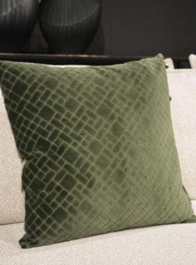Assane Green 2