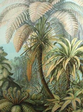Wandkleed Palm 2