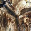 Wandkleed Agate Bruin 2