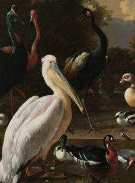 Wandkleed Birds 2