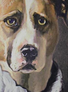 Wandkleed Hond
