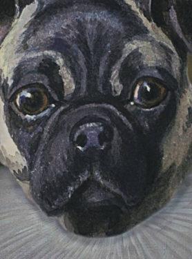 Wandkleed Mops Hond